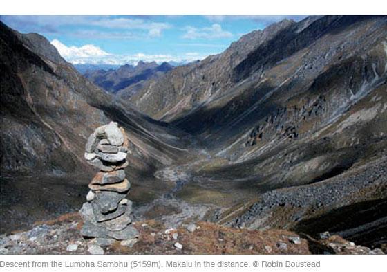 Top 10 Himalaya Herbals Products – Reviews and Photos